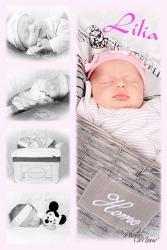 Baby'z 01 Photomouv